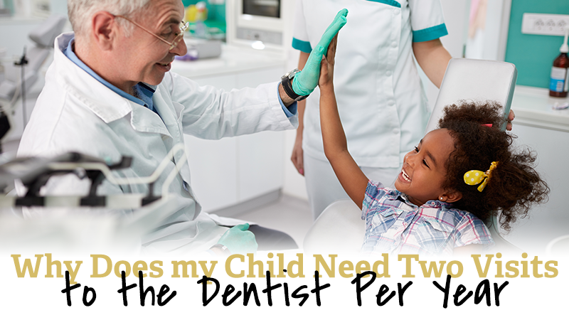 Why Does my Child Need Two Visits to the Dentist Per Year?