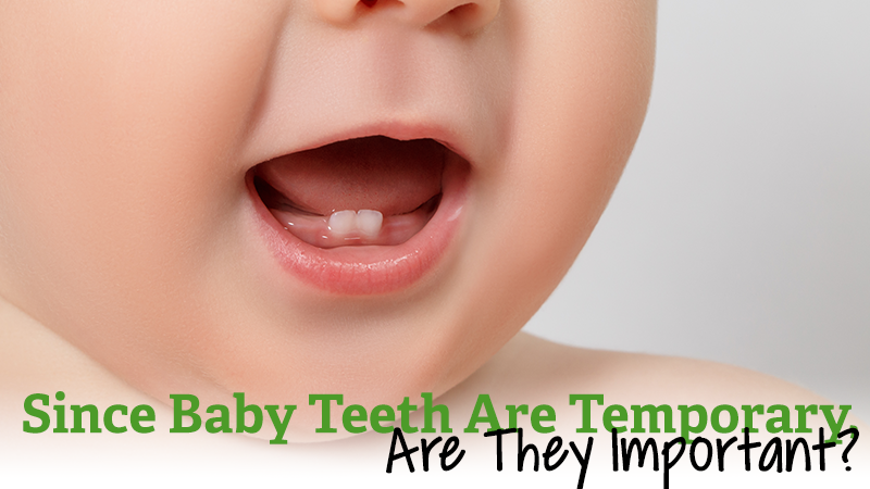 Since Baby Teeth are Temporary, are They Important?
